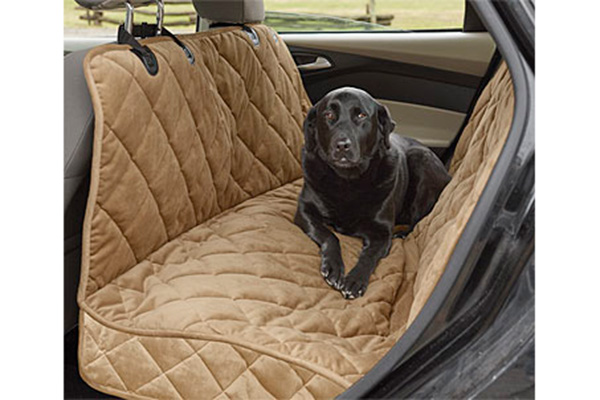 Best Pet Accessories for Your Car: 2019 Edition - Autotrader