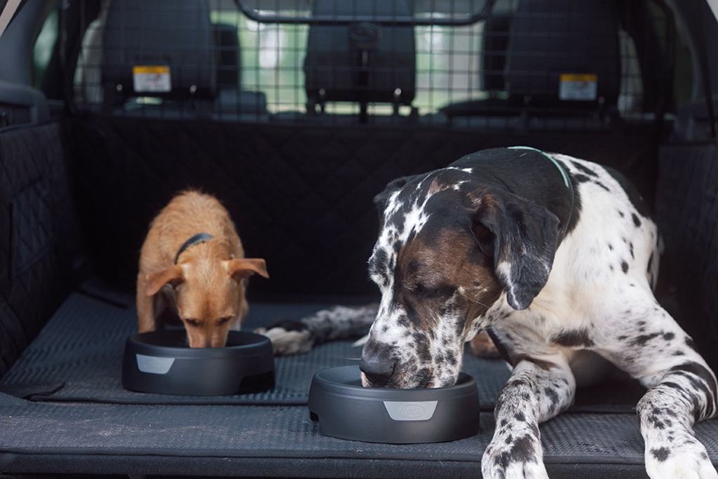 Land Rover Announces New Pet-Friendly Accessories featured image large thumb3