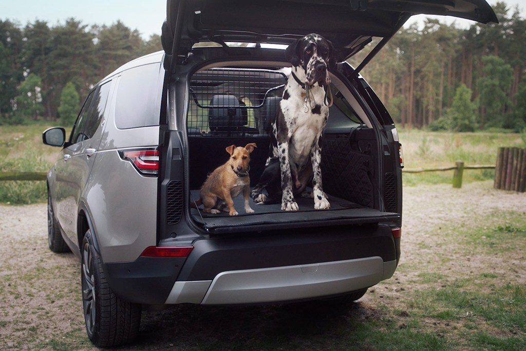 Land Rover Announces New Pet-Friendly Accessories featured image large thumb0